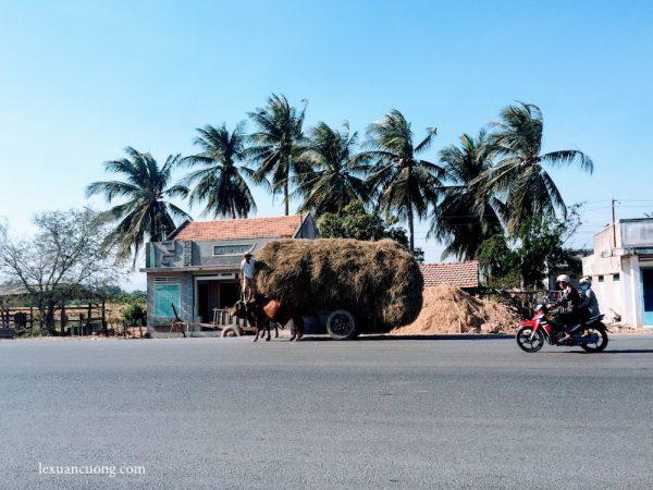 Những con đường ngược gió ở Phan Rí, Bình Thuận.
