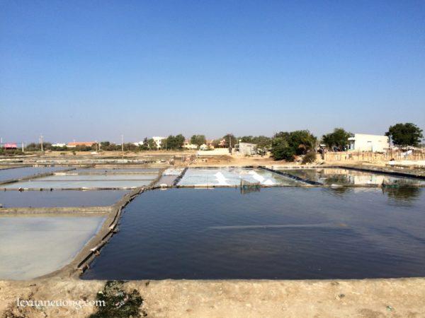 Ruộng muối ở xã Chí Công, Tuy Phong.