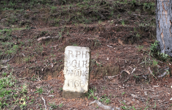 Mốc của BQL rừng Tà Năng, tọa độ: 11.5347, 108.5333