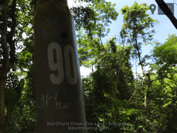 Cột điện trên núi Chứa Chan được đánh dấu từ số 20 - 145