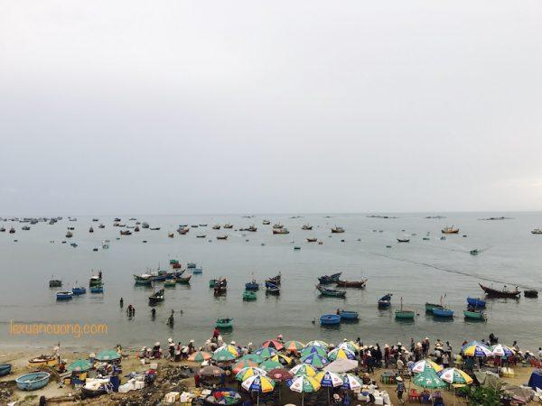 Toàn cảnh làng chài, chợ cá Mũi Né, Phan Thiết