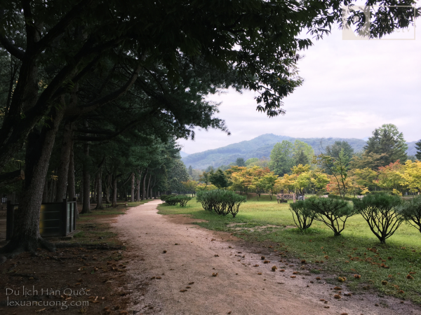 "Kinh nghiệm DU LỊCH DAO NAMI HÀN QUỐC 08 600x450 - Discover Nami Island, South Korea-Film school ""Winter Love Song"""