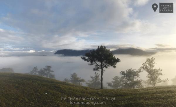 Ngập tràn mây làm mờ đi những cây thông dưới thung lũng