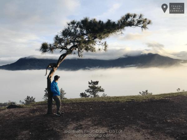 Biển mây trên đồi cây cô đơn Thiên Phúc Đức Đà Lạt.