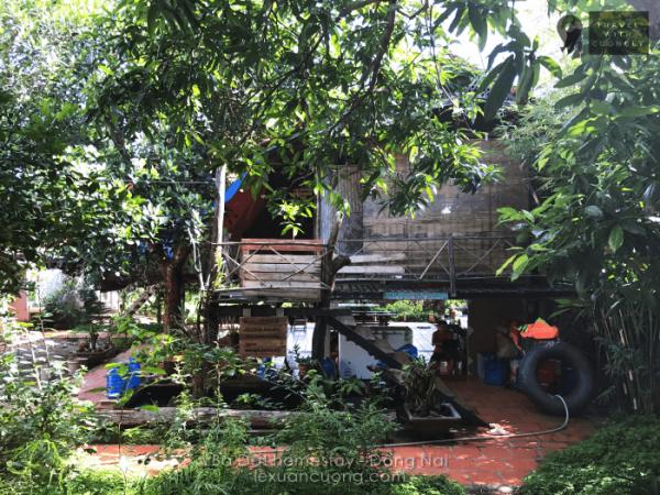 Nhà sàn ở Bà Đất homestay Đồng Nai