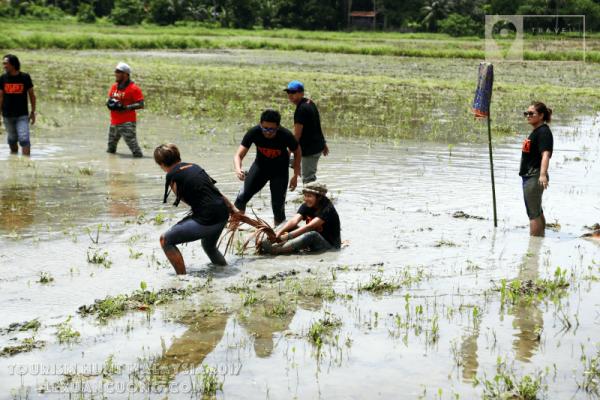 Trò chơi kéo mo cau giữa ruộng, trò chơi truyền thống của Malaysia