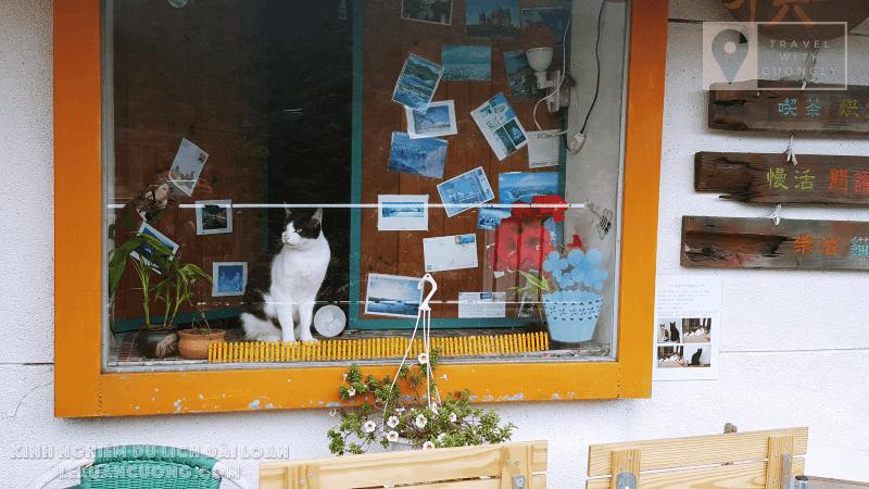 Làng mèo Houtong - Đài Bắc - Đài Loan