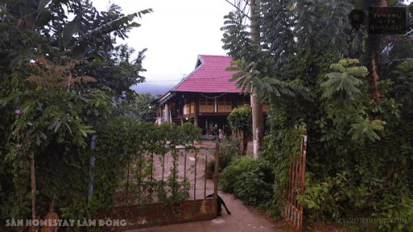 Sàn homestay là căn nhà sàn bằng gỗ nằm khuất sau vườn cây xanh mát.