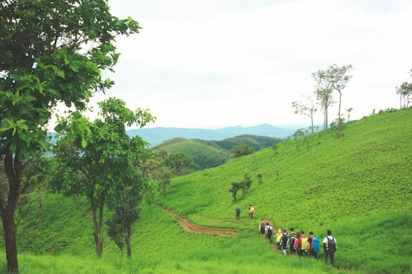 Trekking Features – Phan dung is selected by many people for 2 weekends.