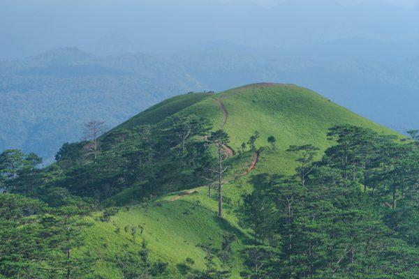 Đến với Tà Năng, chắc chắn bạn sẽ hiểu tại sao cung đường trekking này lại hot đến vậy.