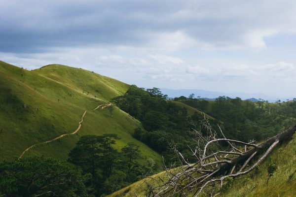 Những ngọn đồi đặc sản ở Tà Năng.