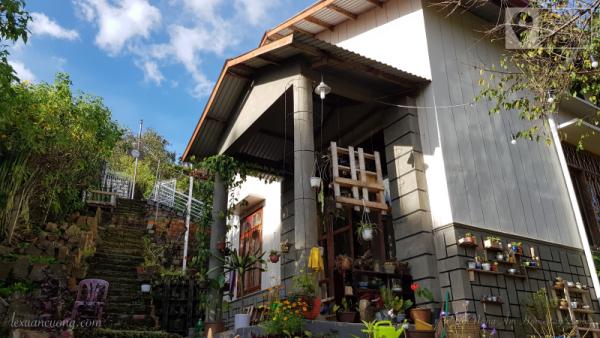 Vườn Nắng Ấm homestay Đà Lạt, ngôi nhà nhỏ dưới những con dốc cao.