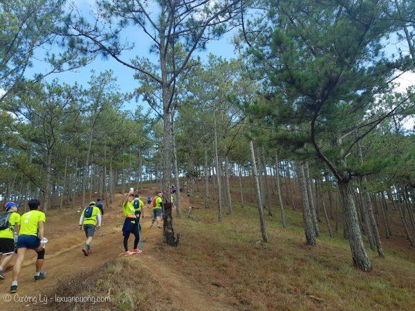 Dalat ultra trail - bắt đầu lên dốc và tách ra các tốp khác nhau!