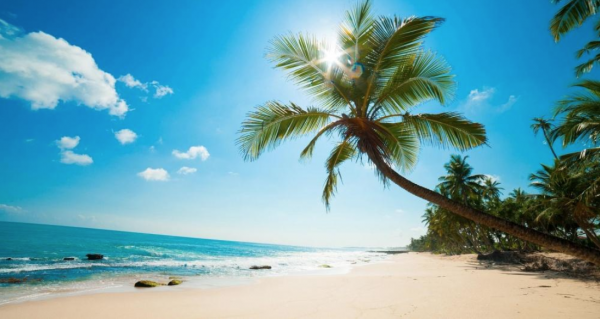 Khách du lịch Việt Nam 2 600x319 - Du khách quốc tế đến Việt Nam tăng trưởng mạnh mẽ