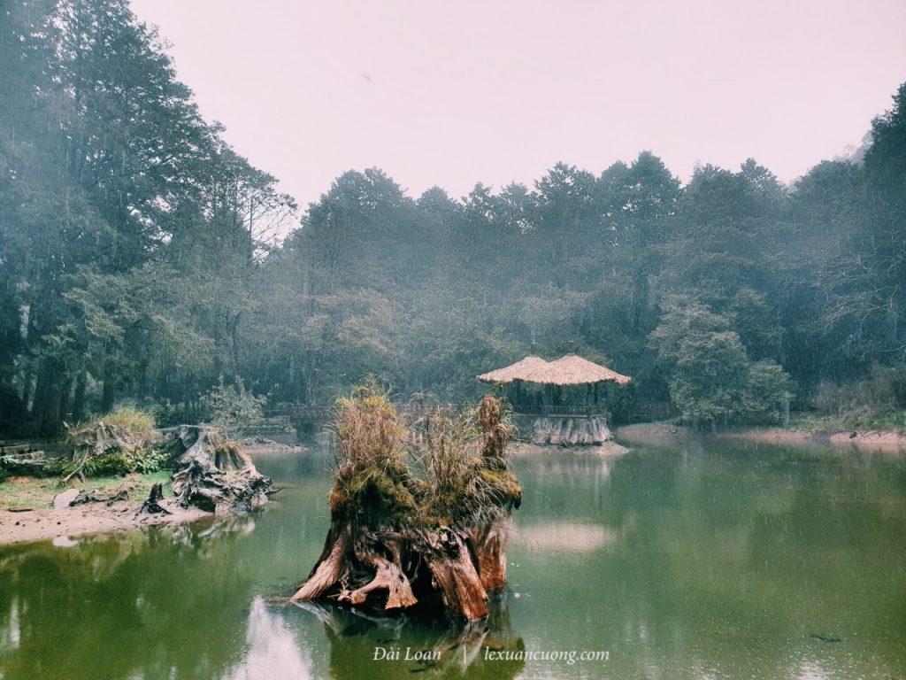 Đầm Tỉ Muội mùa cạn nước, bao gồm đầm Tỷ & đầm Muội... nghe nói khi nhiều nước, sẽ rất huyền ảo & lung linh.