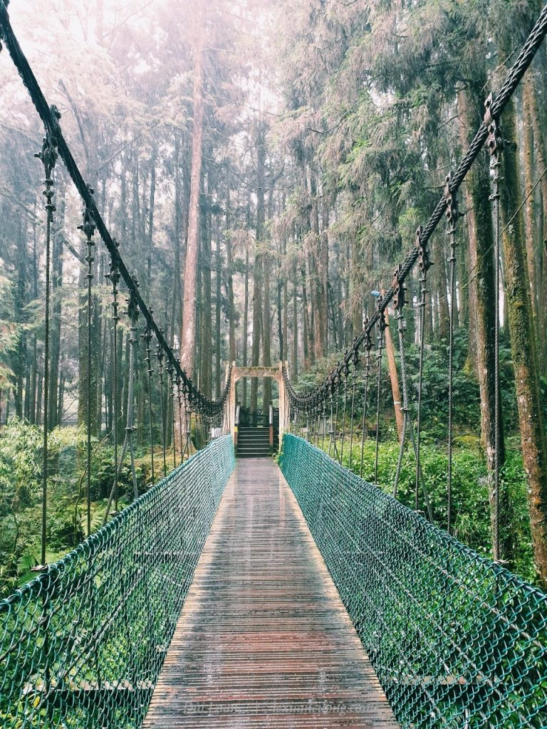 The suspension bridge between the Alishan forest.
