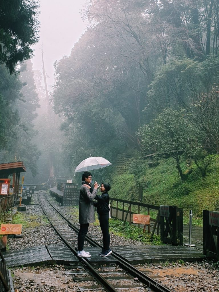 """Don't forget to take this """"romantic"""" picture at the Sacred Tree Station."""
