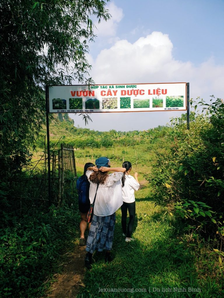 Visit the Herbal Gardens of cooperatives, where to use as bathing pills, soaking... and sell many other related products.