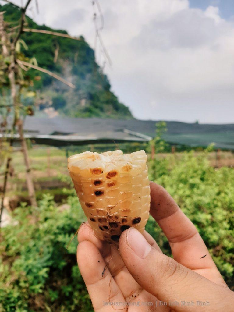 kinh nghiem du lich ninh binh 51 768x1024 - Kinh nghiệm du lịch Ninh Bình 2 ngày cuối tuần: Tràng An, Tam Cốc, tắm vua Sao Sa