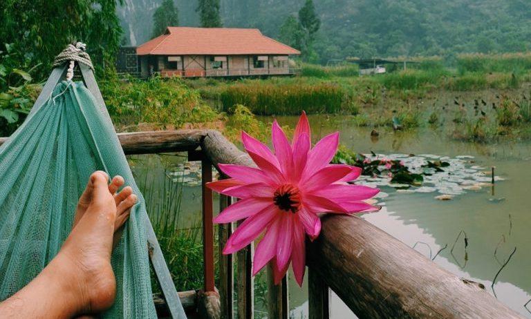 kinh nghiem du lich ninh binh 5 768x1024 - Review Lotus Field Homestay khi du lịch Ninh Bình