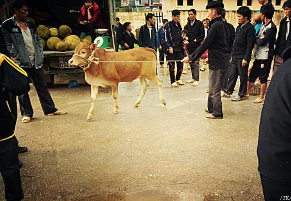 Chợ phiên Đồng Văn 600x416 - Kinh nghiệm du lịch Hà Giang đầy đủ & chi tiết
